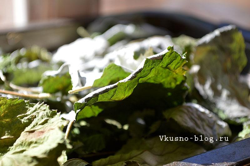 Домашний чай из листьев малины - сушеные листья